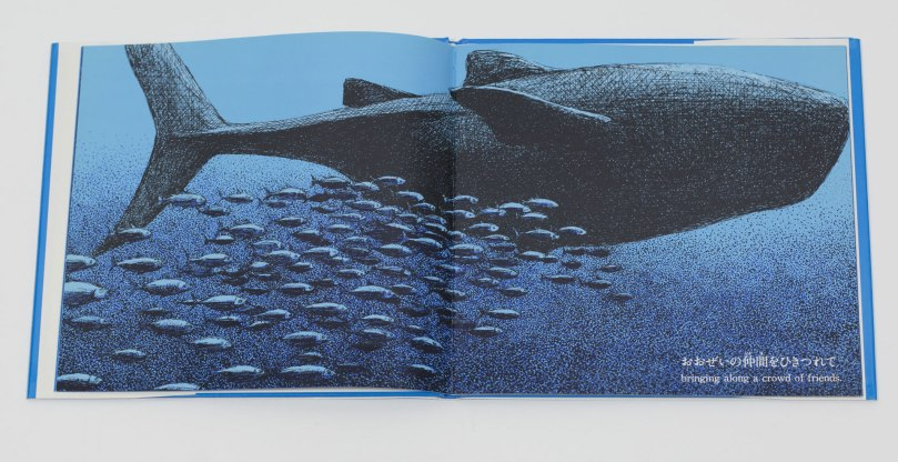 Livre-jeunesse-Whale-Shark-Susumu-Shingu-1991-2